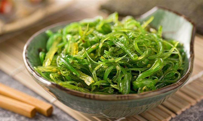 bienfaits des algues