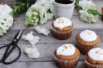 Cupcakes natures